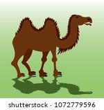 a bactrian camel eager to carry ... | Shutterstock .eps vector #1072779596