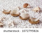 nourishing food bird nest   Shutterstock . vector #1072795826