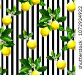 seamless citrus vector... | Shutterstock .eps vector #1072924922