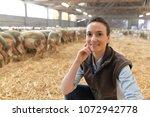 portrait of smiling sheep... | Shutterstock . vector #1072942778