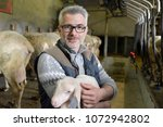 farmer in shed holding lamb in... | Shutterstock . vector #1072942802