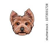 yorkshire terrier face. dog... | Shutterstock .eps vector #1073031728
