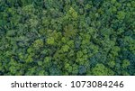 aerial top view forest  texture ... | Shutterstock . vector #1073084246