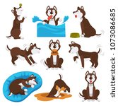 husky dog cartoon pet playing...   Shutterstock .eps vector #1073086685