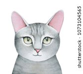 lovely closeup portrait in... | Shutterstock . vector #1073104565