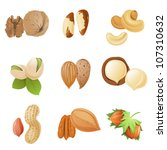 9 highly detailed nut icons | Shutterstock .eps vector #107310632