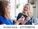 ladies friends night out wine... | Shutterstock . vector #1073288036