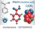 niacin  nicotinic acid ... | Shutterstock .eps vector #1073349422