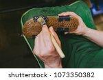 experienced footwear industry... | Shutterstock . vector #1073350382