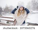 walk on a snowy day | Shutterstock . vector #1073363276