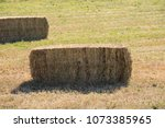 Bailed Hay  Animal Feed Drying...