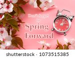 turn clocks one hour ahead ... | Shutterstock . vector #1073515385