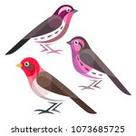 stylized birds   rosefinches | Shutterstock .eps vector #1073685725