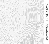 topographic map background... | Shutterstock .eps vector #1073761292