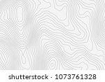 topographic map background... | Shutterstock .eps vector #1073761328