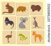 australia wild animals card... | Shutterstock .eps vector #1073800502