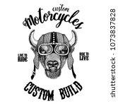 buffalo  bison ox  bull biker ...   Shutterstock .eps vector #1073837828