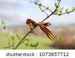 st. george's ribbons on tree... | Shutterstock . vector #1073857712
