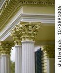 medium closeup of ornate... | Shutterstock . vector #1073891006