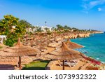 sunny resort beach with palm... | Shutterstock . vector #1073932322