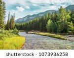 Mountain Stream In Banff...