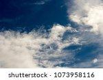 white  grey heavy fluffy ... | Shutterstock . vector #1073958116