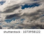 white  grey heavy fluffy ... | Shutterstock . vector #1073958122