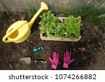 set of gardeners for planting... | Shutterstock . vector #1074266882