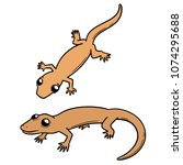 vector set of lizards | Shutterstock .eps vector #1074295688