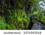 levada trails on madeira island | Shutterstock . vector #1074392018
