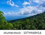 Mountainous Tropical Forest...