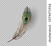 peacock feather on transparent... | Shutterstock .eps vector #1074471926