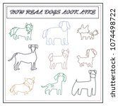 vector line illustrations dogs | Shutterstock .eps vector #1074498722