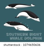 southern right whale dolphin...   Shutterstock .eps vector #1074650636
