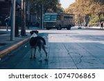 santiago  chile   april 19 ... | Shutterstock . vector #1074706865