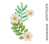 flowers and leafs decorative... | Shutterstock .eps vector #1074751376