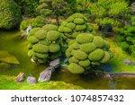 Japanese Garden In San...