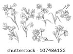 orchids illustration | Shutterstock . vector #107486132