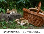 harvested at autumn amazing... | Shutterstock . vector #1074889562