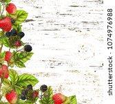 botanical border on grunge... | Shutterstock . vector #1074976988