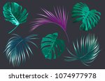 vector palm leaves  monstera... | Shutterstock .eps vector #1074977978