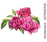 set watercolor elements of... | Shutterstock . vector #1075032932