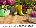 gardening tools and flowers  on ...   Shutterstock . vector #1075063202