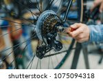technical expertise taking care ... | Shutterstock . vector #1075094318