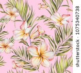 exotic plumeria flowers and... | Shutterstock . vector #1075340738