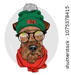 Vector Dog With Glasses  Green...