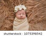 sleeping newborn girl in flower ... | Shutterstock . vector #1075398542