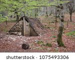 wood cabin at beech forest.... | Shutterstock . vector #1075493306