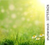 green grass on the green... | Shutterstock . vector #107553626