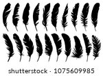 feathers of birds. | Shutterstock .eps vector #1075609985